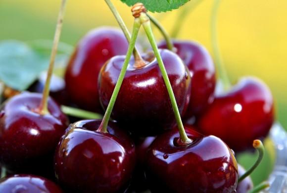 produttore frutta a ferrara